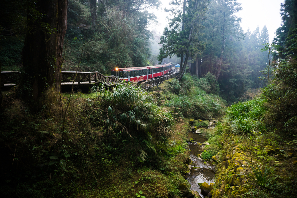 Alishan Forest Rail/Train